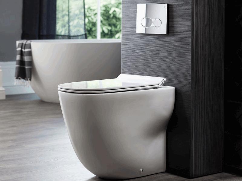 Bauhaus wild toilet