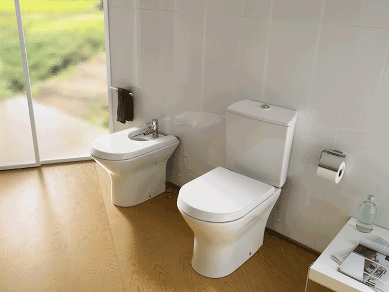 Roca nexo toilet