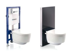 Geberit frame available from BATHLINE bathroom Showrooms